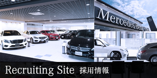 RECRUITING SITE 採用情報